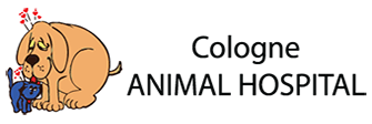 Cologne Animal Hospital