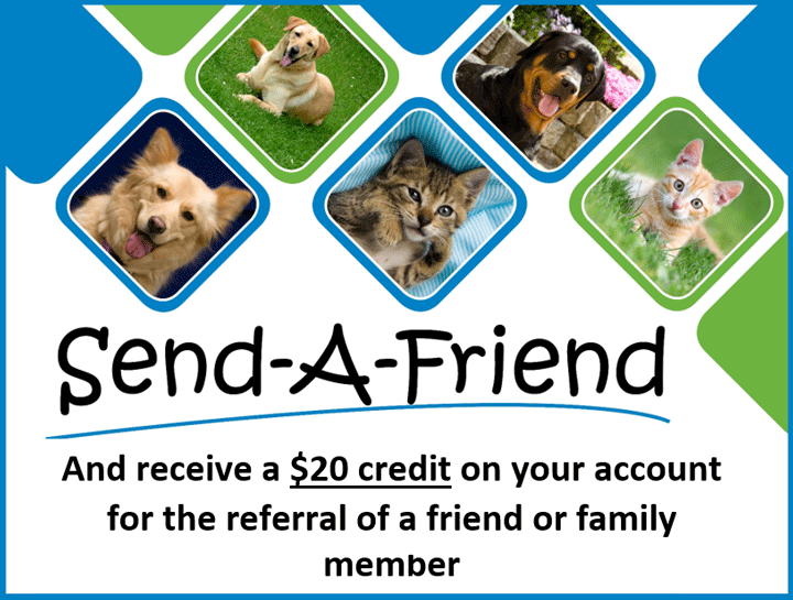 Send a Friend & Get $20 Off